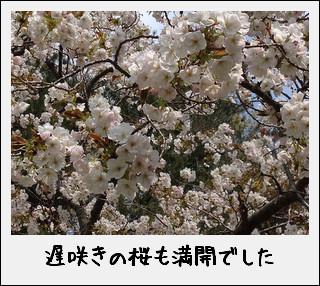 c0259934_1510749.jpg