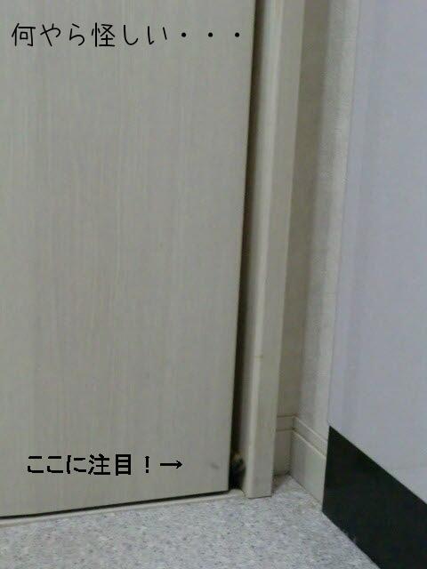 c0259945_13482095.jpg