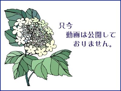 e0235910_19363789.jpg