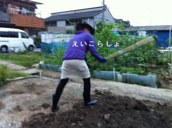 a0153395_18494116.jpg
