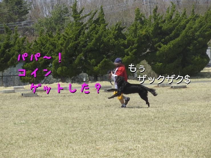 c0237824_12162138.jpg