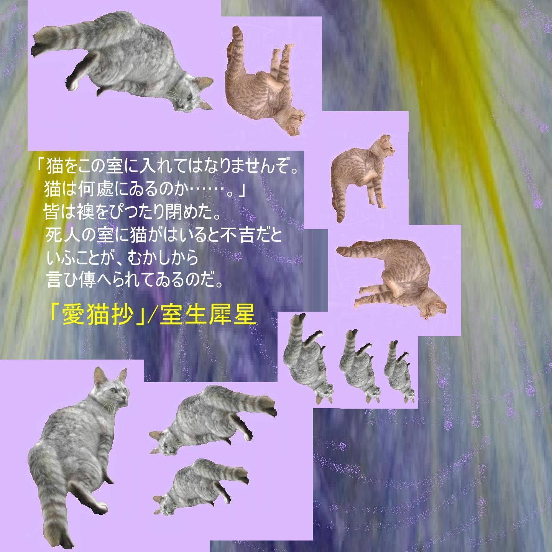 e0295821_18383639.jpg