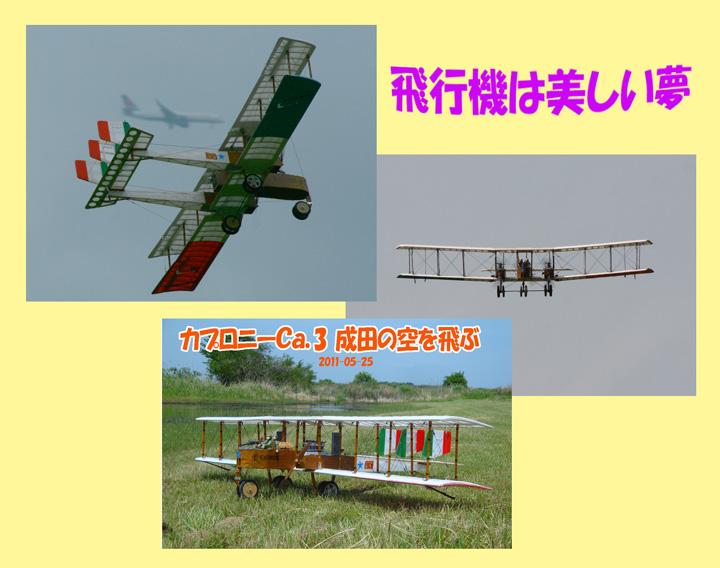 a0141004_10435948.jpg