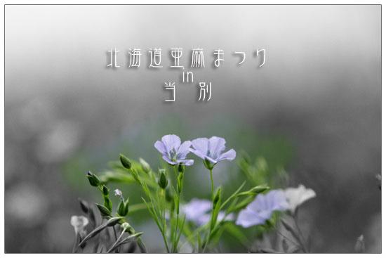 e0235910_1011539.jpg
