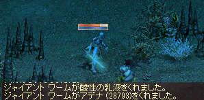 a0314557_1572532.jpg