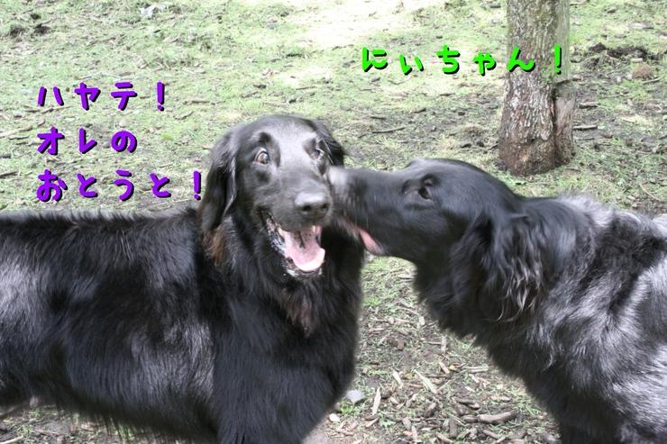 c0237824_1041481.jpg