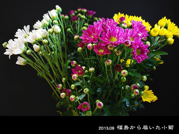 c0009981_14585136.jpg