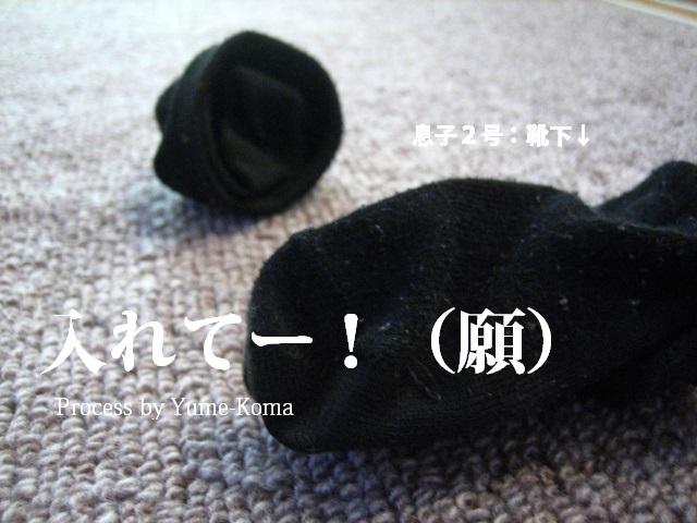 a0314380_16465967.jpg