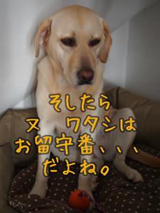 c0211876_717364.jpg
