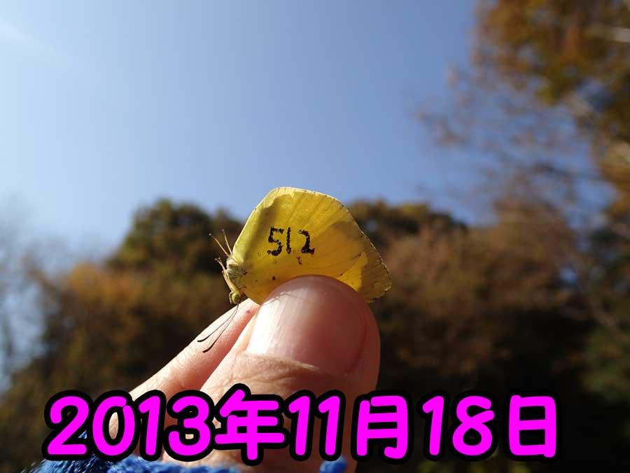 e0253104_23020980.jpg
