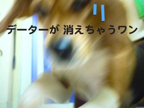 c0190940_20114384.jpg