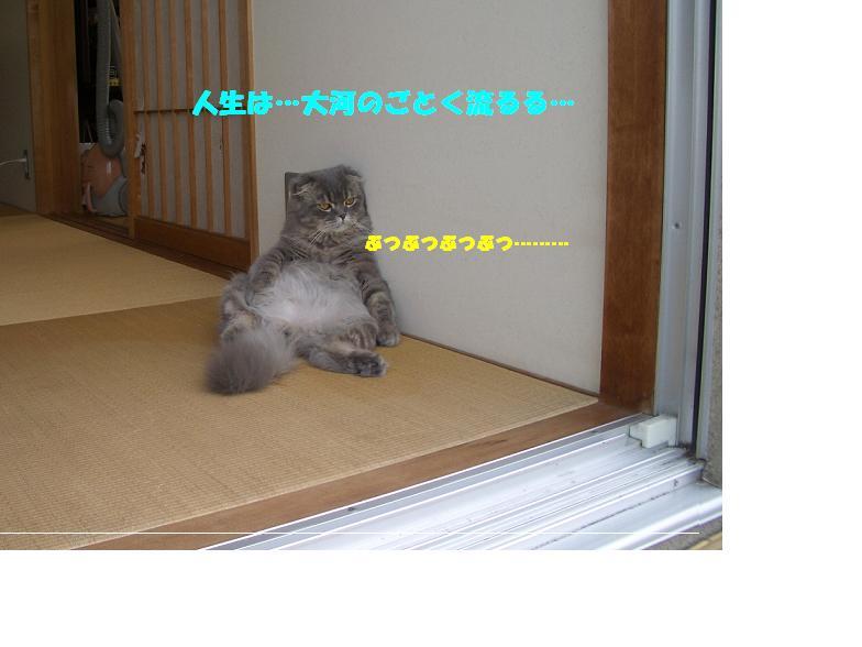 c0226073_1639342.jpg