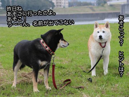 c0166018_0103642.jpg