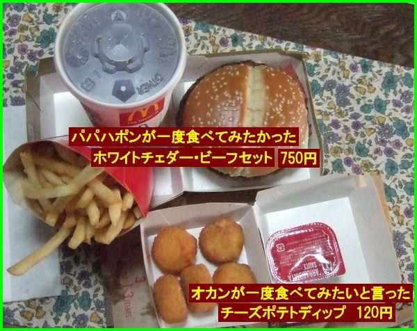 c0004734_1634794.jpg