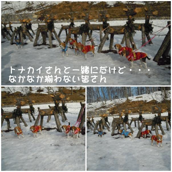 c0166622_20452011.jpg