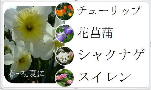 c0129682_19345963.jpg