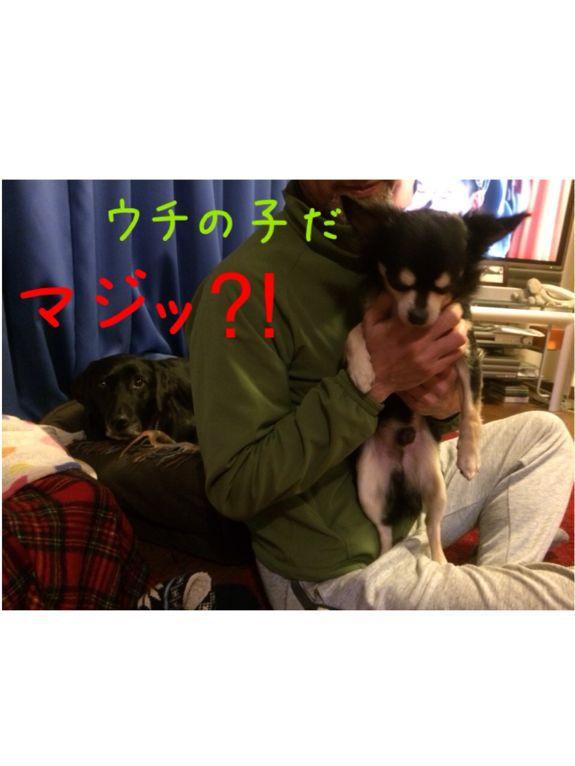 e0244283_049381.jpg