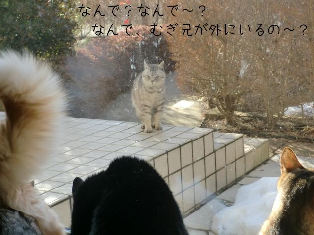 c0259945_18493880.jpg