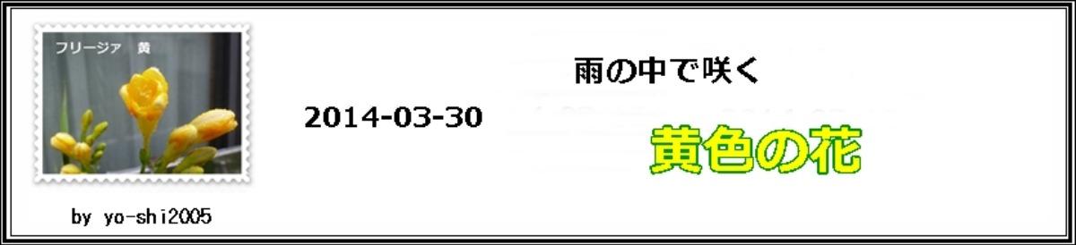 e0033229_1556382.jpg