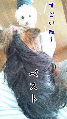 e0248268_23520565.jpg