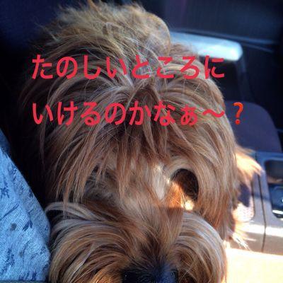 c0215957_072280.jpg