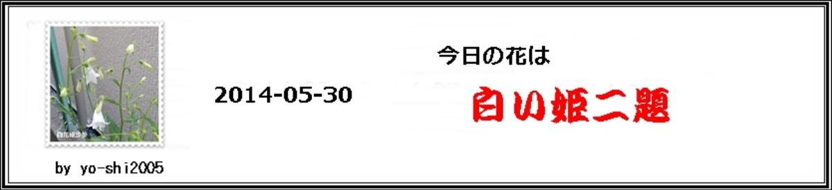 e0033229_2043650.jpg