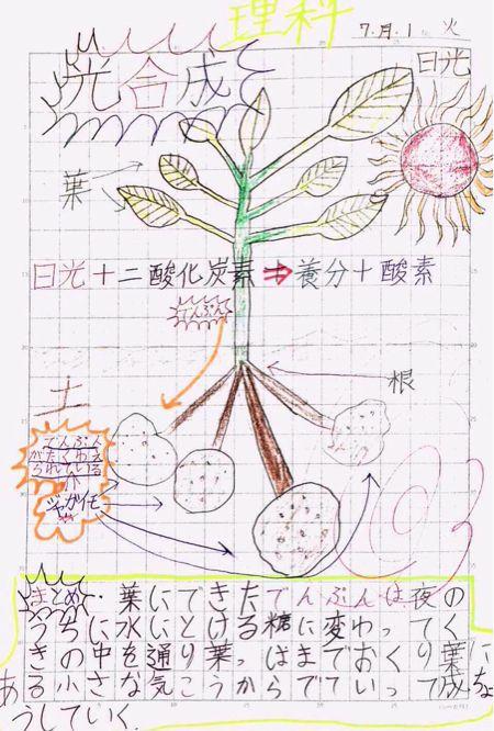 a0301175_2012642.jpg