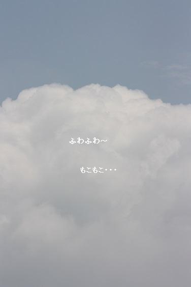 e0170441_1125792.jpg