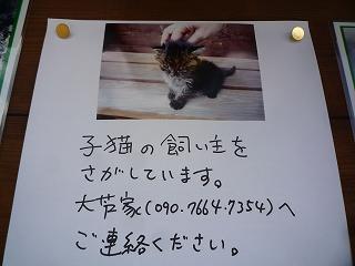 c0189218_1993018.jpg