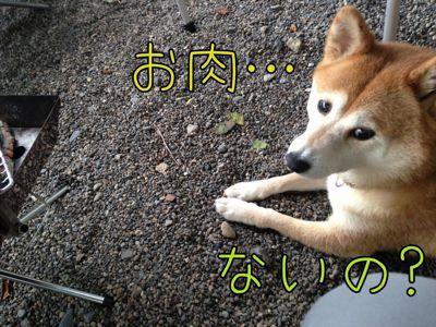 c0298732_2012309.jpg