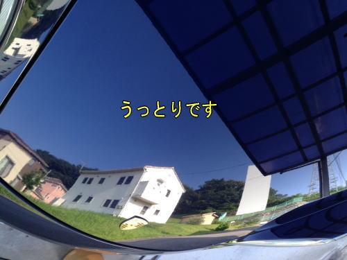e0094656_8483641.jpg