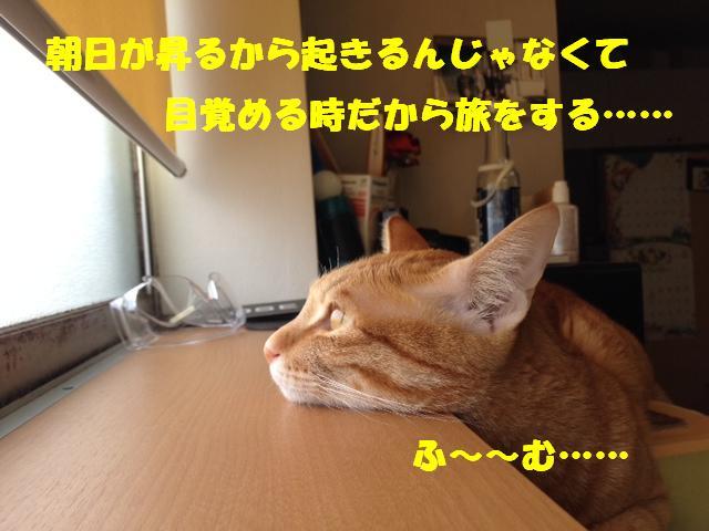 c0226073_11315269.jpg