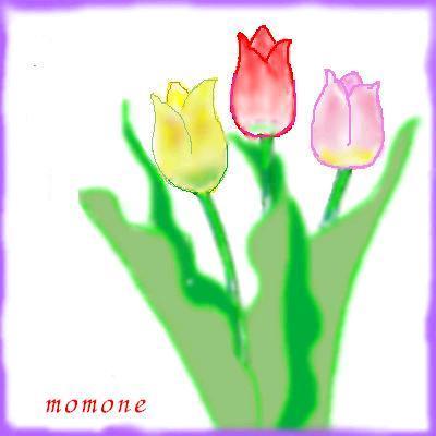 c0166666_16551273.jpg