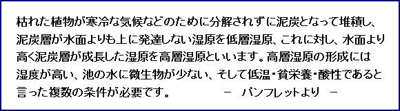 c0051107_1333154.jpg