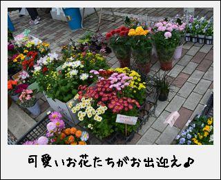 c0259934_13562319.jpg