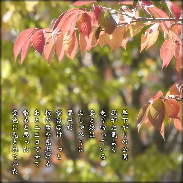a0197968_2045323.jpg