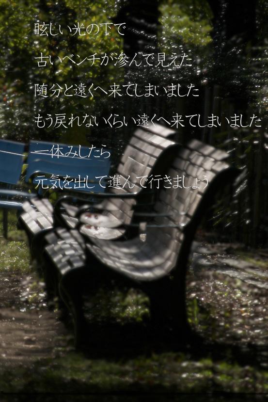 a0207396_20571552.jpg
