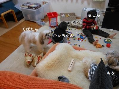 c0261346_20252787.jpg