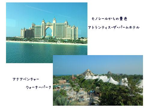 c0051105_18255.jpg