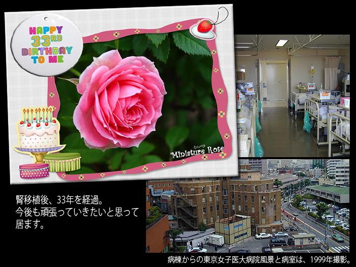 c0009981_16395259.jpg
