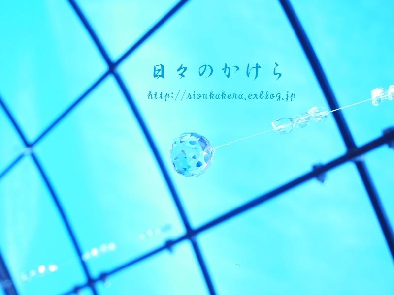 c0358500_21352018.jpg