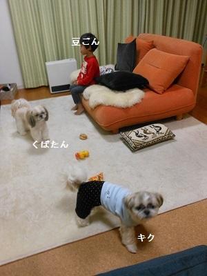 c0261346_0761.jpg