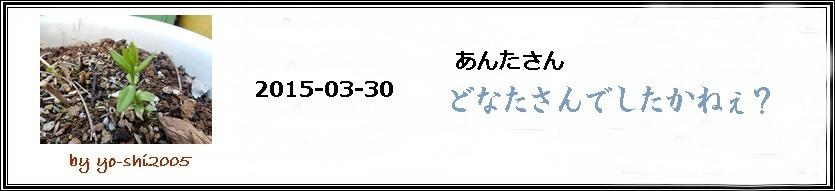 e0033229_1745542.jpg
