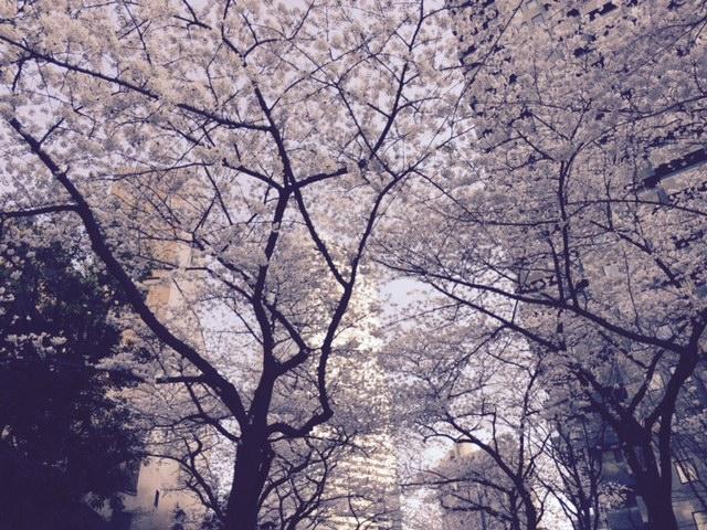 c0189469_20112175.jpg