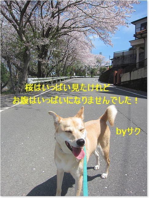 c0006757_21103998.jpg