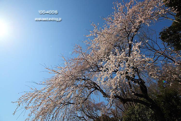 c0080036_0425294.jpg