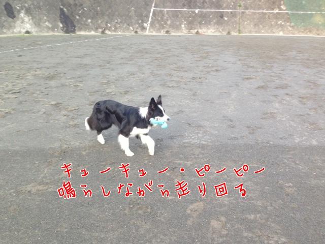 a0232619_16301279.jpg