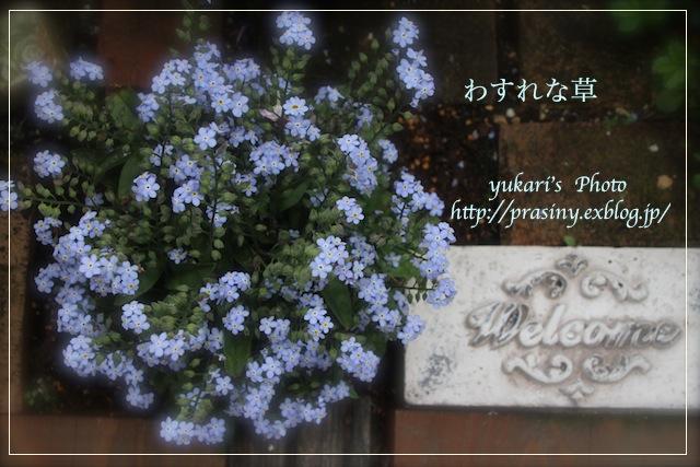 e0218001_2351534.jpg