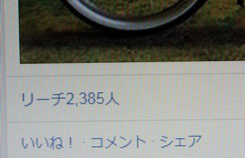 a0139912_7453685.jpg