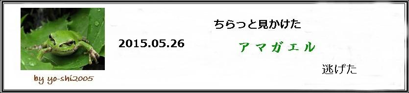 e0033229_19453850.jpg